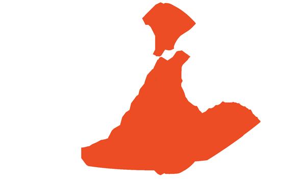 Logo konijn